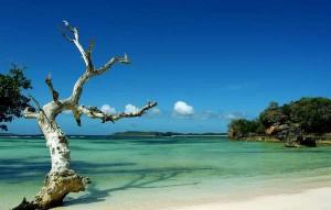 Indahnya pantai NTT